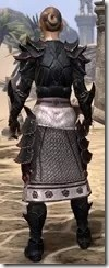 Telvanni Master Wizard - Female Back