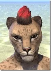 The Standing Flame - Khajiit Front