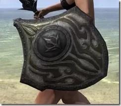 Outlaw Beech Shield 2