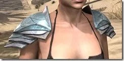 Glass Iron Pauldron - Female Front