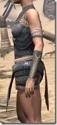 Silken Ring Iron Cuirass - Female Side