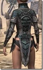 Wood Elf Orichalc Cuirass - Female Rear