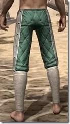 Ebonheart Pact Homespun Breeches - Male Rear