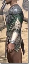 Ebonheart Pact Homespun Jerkin - Male Side
