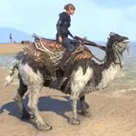 Frostbane Camel