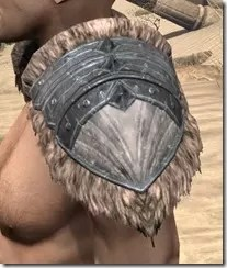 Skinchanger Iron Pauldron - Male Side