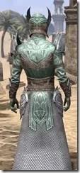 Divine Prosecution Light - Male Shirt Close Rear
