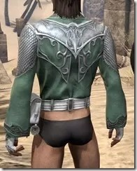 Sapiarch Iron Cuirass - Male Rear