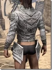 Scalecaller Iron Cuirass - Male Rear