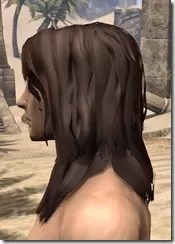 Barbaric Windblown Hair Male Side