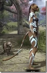 Body Imprint of the Psijic Order Khajiit Side
