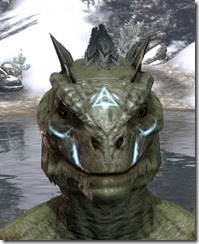 Face Imprint of the Psijic Order Argonian Front