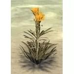 Flower, Yellow Oleander