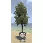Alinor Potted Plant, Twin Saplings