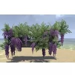 Alinor Windowbox, Purple Wisteria