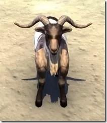 Wrothgar Buck Goat Front