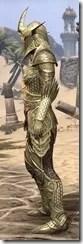 Auroran Knight Female Side