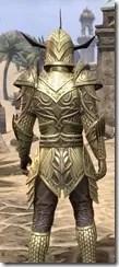 Auroran Knight Male Close Rear