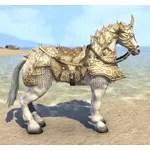Auroran Warhorse