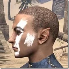 Double Diagonal Face Warpaint Male Side