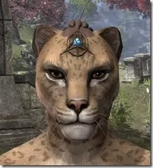 Magicka Brow Medallion - Khajiit Front