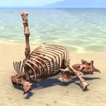 Animal Bones, Jumbled