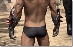 Firedrake Gauntlets - Male Rear