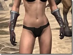 Silver Dawn Medium Bracers - Female Front