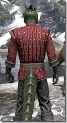 Alliance Rider Outfit EP - Argonian Male Close Rear