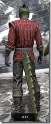 Alliance Rider Outfit EP - Argonian Male Rear