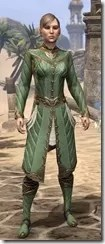 Kinlord's Alinor Attire Female Front