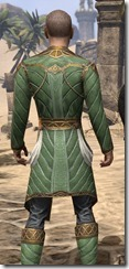 Kinlord's Alinor Attire Male Close Rear