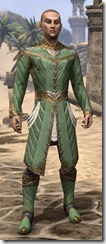 Kinlord's Alinor Attire Male Front