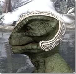 Psijic Skullcap Argonian Side