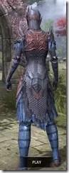 Renegade Dragon Priest Dyed Rear