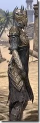 Renegade Dragon Priest Female Close Side