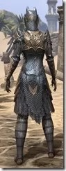 Renegade Dragon Priest Female Rear