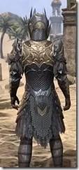 Renegade Dragon Priest Male Close Rear