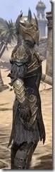 Renegade Dragon Priest Male Close Side