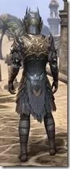 Renegade Dragon Priest Male Rear