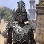Battlefield Acrobat (Daggerfall Covenant)