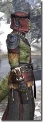 Elder Argonian - Argonian Male Robe Close Side