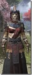 Elder Argonian - Khajiit Female Robe Close Front