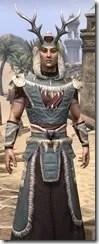 Huntsman Ancestor Silk - Male Robe Close Front
