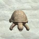 Seed Doll, Turtle