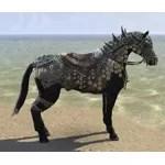 Shellback Warhorse