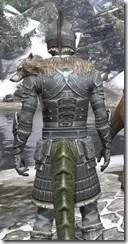 Silver Dawn Iron - Argonian Male Close Rear