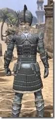 Silver Dawn Iron - Male Close Rear