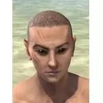 Werewolf Claw Face Scars