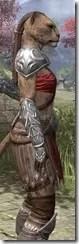 Arena Gladiator - Khajiit Female Close Side